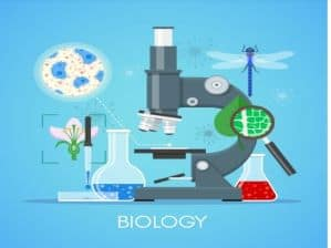 BGCSE BIOLOGY WORKSHOP: PART 1