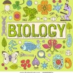 BGCSE: BIOLOGY WORKSHOP 2